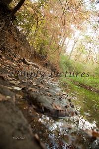 Banita Creek089