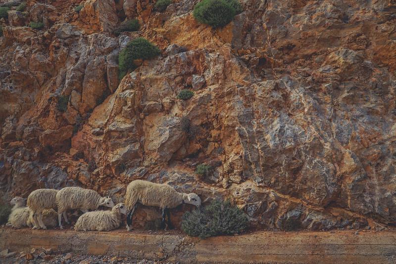 Crete 06.17-183.jpg
