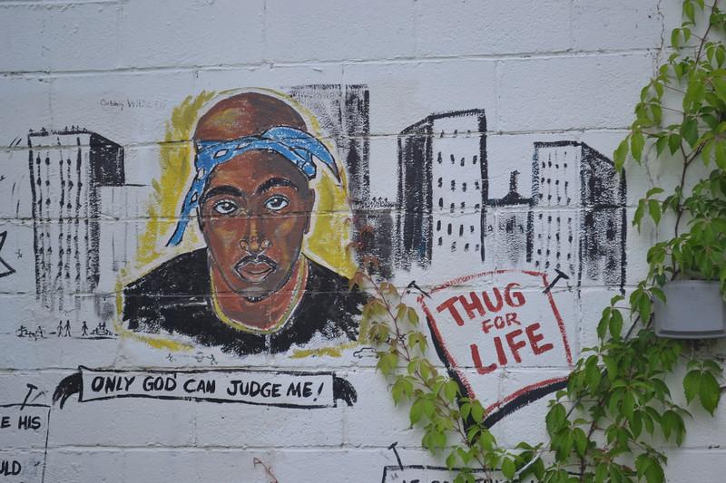 074-thug-for-life_14246497660_o.jpg