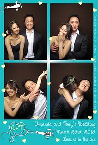 Amanda and Tony's Wedding