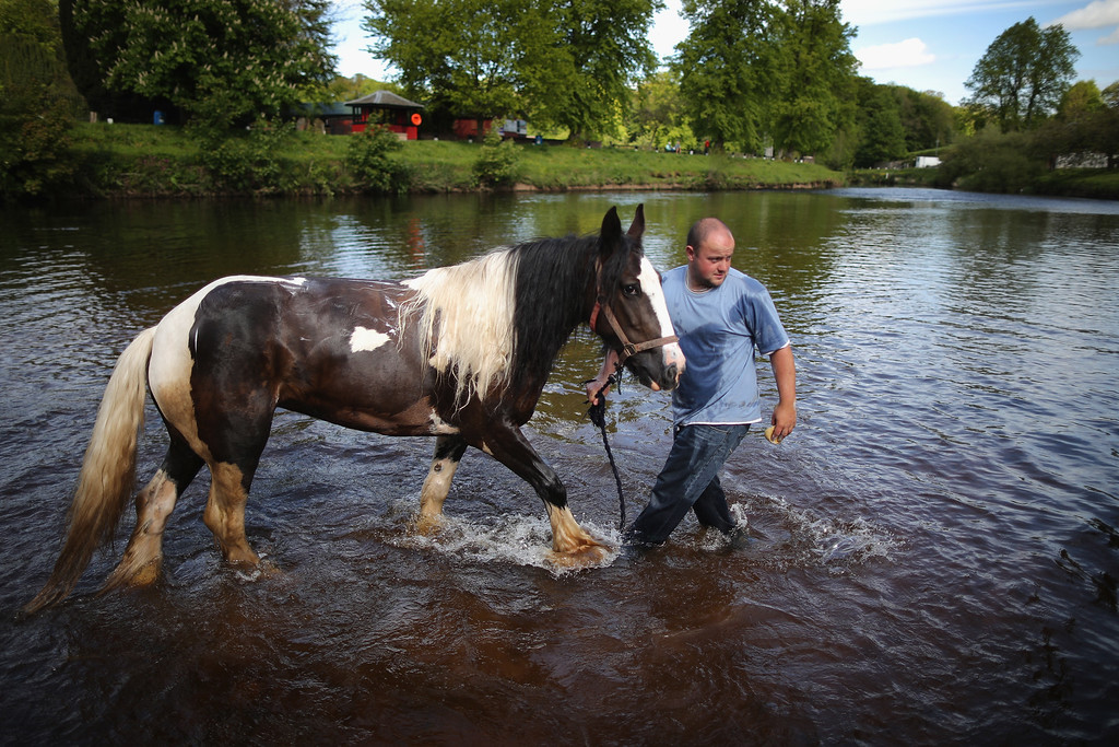 . Travellers wash their horses and traps in the River Eden during the Appleby Horse Fair on June 4, 2013 in Appleby, England. The Appleby Horse Fair has existed under the protection of a charter granted by James II since 1685 and is one of the key gathering points for the Romany, gypsy and traveling community. The fair is attended by about 5,000 travelers who come to buy and sell horses. The animals are washed and groomed before being ridden at high speed along the \'mad mile\' for the viewing of potential buyers.  (Photo by Christopher Furlong/Getty Images)