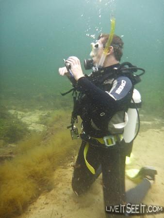 Busselton Jetty Dive - Dec' 2010