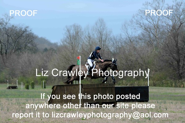 BRIE MURRAY AND FERNHILL DISCO #18