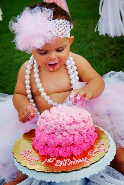 Skylar sin cake XII.jpg