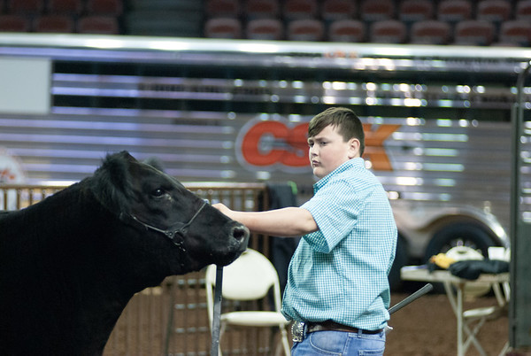 OYE Steer Show Day 1 3/20/2019