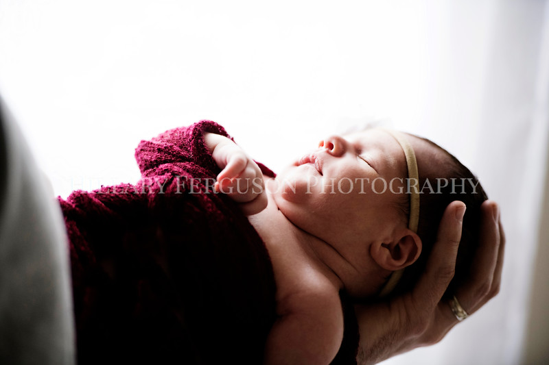 Hillary_Ferguson_Photography_Carlynn_Newborn172.jpg