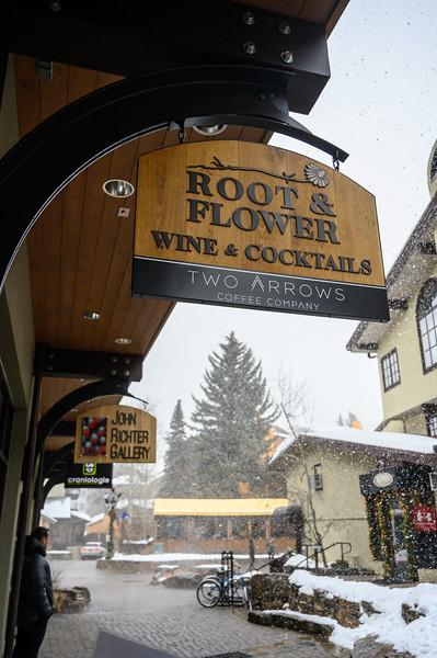 Root+Flower-Winter Shoot