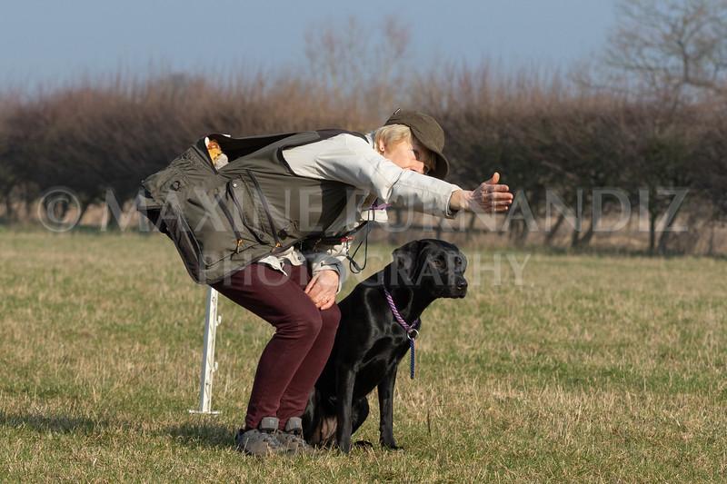 Dog Training Novice GD Feb2019-5997.jpg