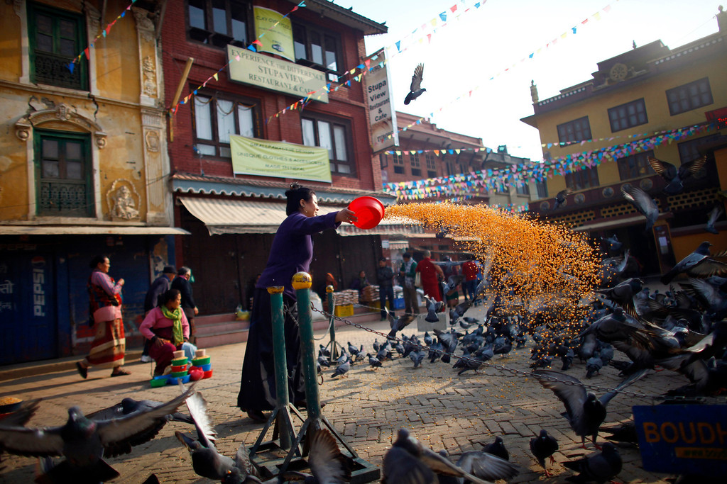 . A Nepalese Buddhist woman feeds pigeons near the Boudhanath Stupa in Katmandu, Nepal, Tuesday, March 19, 2013. A Tibetan monk self immolated last month in the premise of this stupa, an important pilgrimage site for Buddhists. (AP Photo/Niranjan Shrestha)