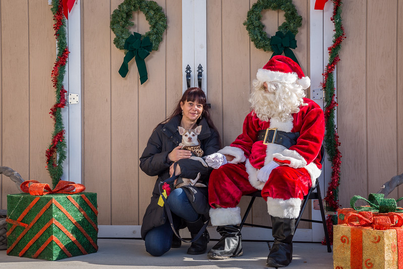 Pet Pictures With Santa-61.jpg