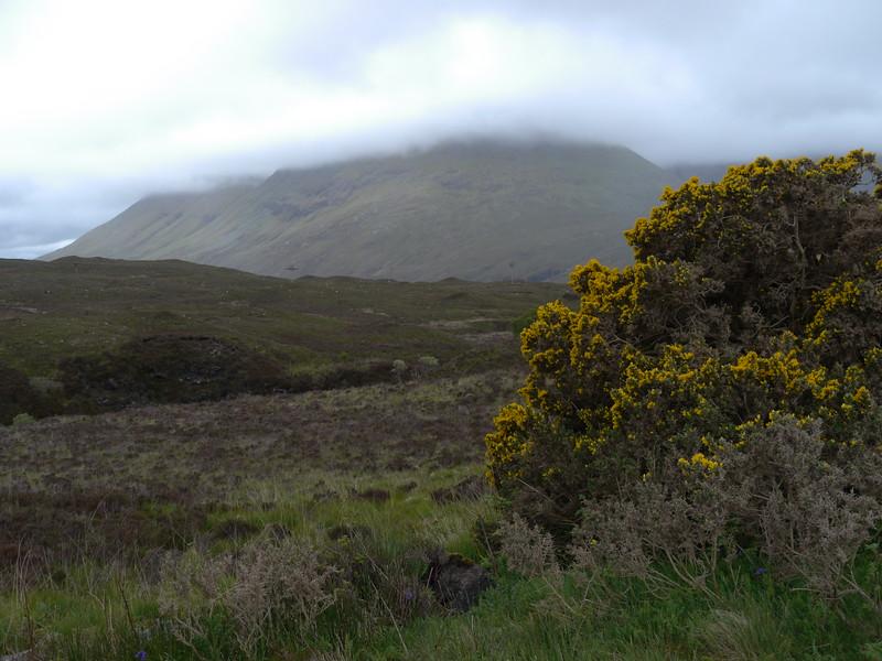 @RobAng Juni 2015 / Sconser, Isle of Skye / Eilean a'Cheo Ward  (Inner Hebridies), Scotland, GBR, Grossbritanien / Great Britain, 72 m ü/M, 2015/06/19 17:27:09