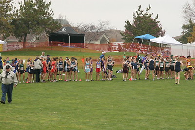 2008 Eisenhower Cross Country Season