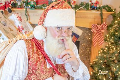 Real Santa Beard