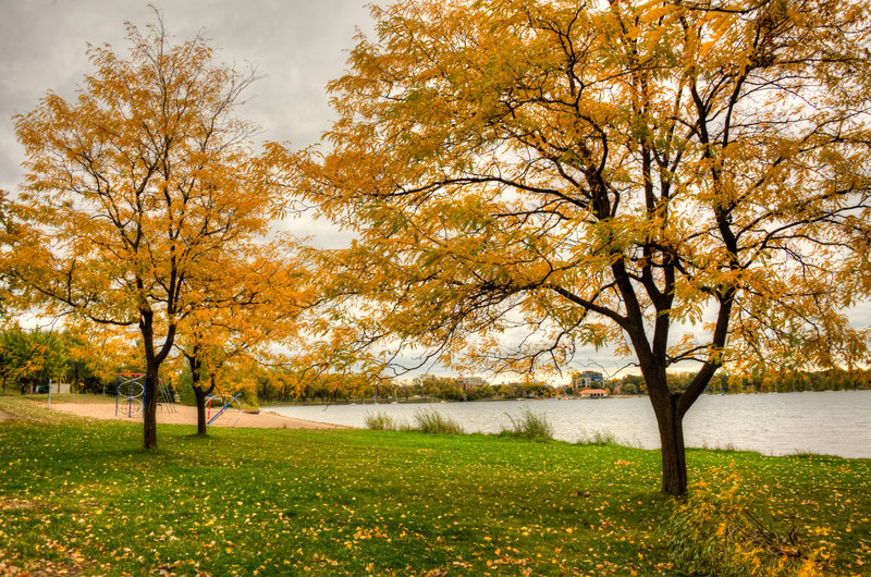 MN playground Fall.jpg