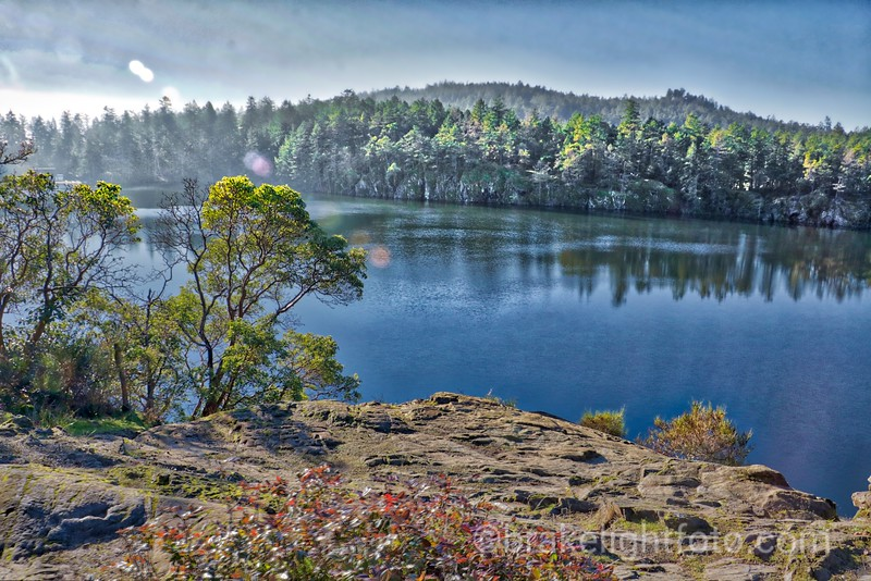 Thetis Lake