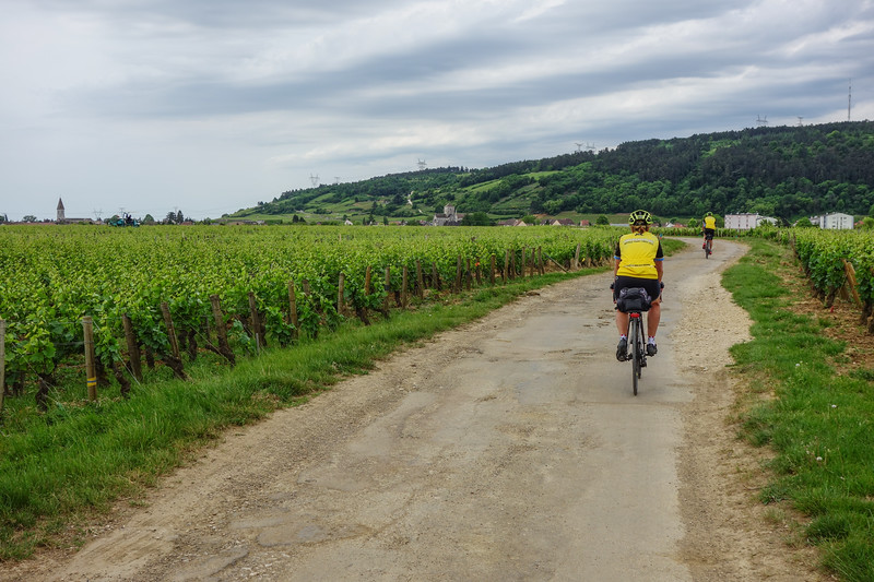 Cycling thru Burgundy