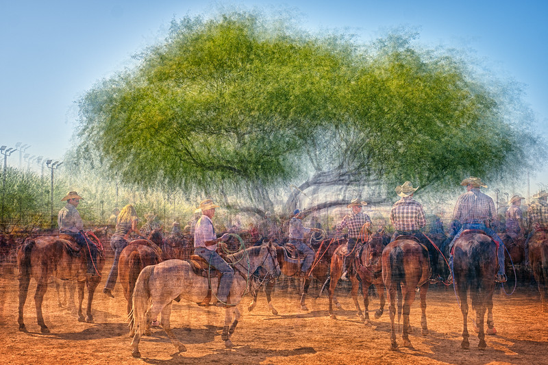 Ropers Tree - Rancho Rio - Wickenburg, AZ.