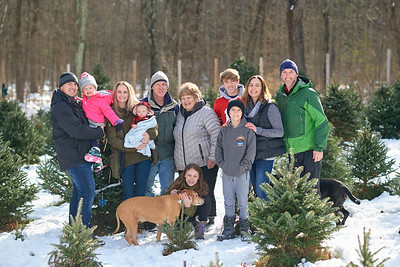 George Family Christmas Tree Farm
