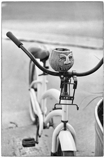 20-Pumpkin-head-bike-35-Biogon.jpg