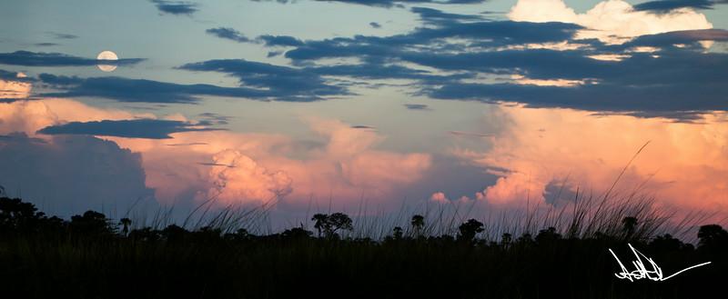 Botswana LandscapeS-12.jpg