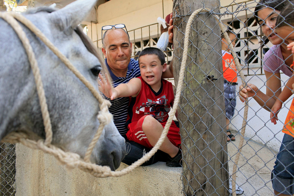 . Cristian Vazquez, 6, reaches out to a horse as his teacher Armando San Jorge, from the Dora Alonso school, looks on during a field trip to the zoo in Havana, Cuba on May 9, 2013. The school caters to the education of children with autism and is paid for by the state.  (AP Photo/Franklin Reyes)