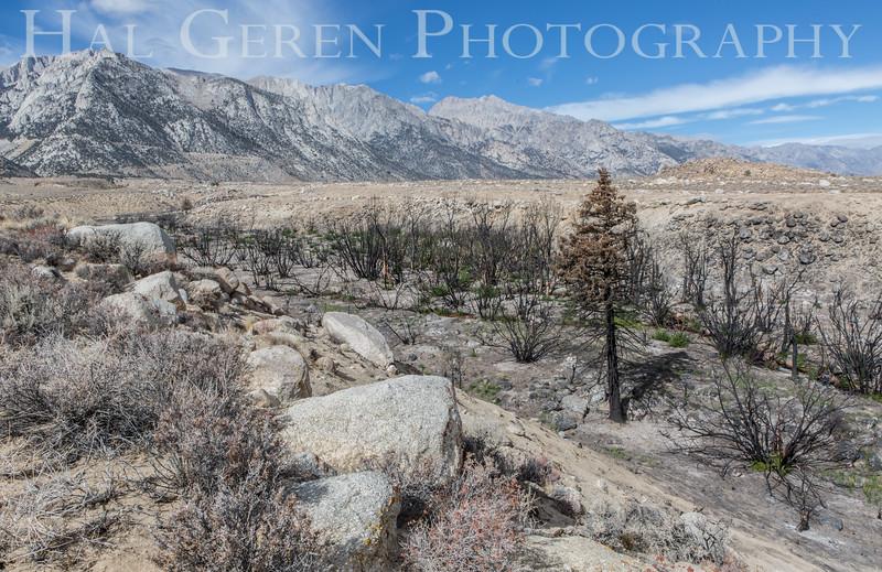 Burnt River Wash Heart Arch Alabama Hills Lone Pine, California 1610S-BW1