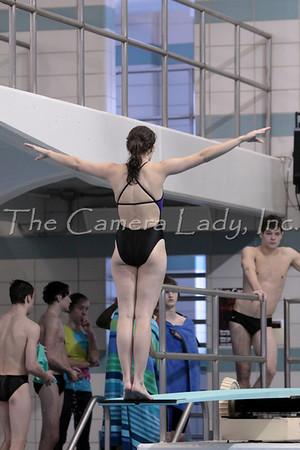 2010 SW Ohio Div 2 Diving Finals 2.17