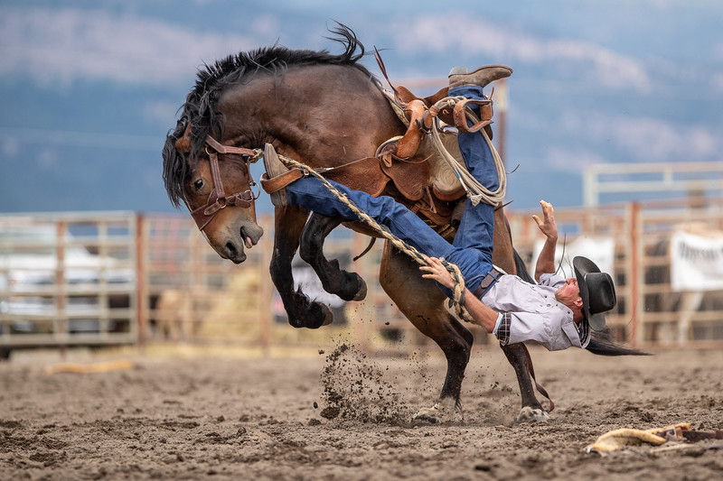 2019 Rodeo A (353 of 1320).jpg