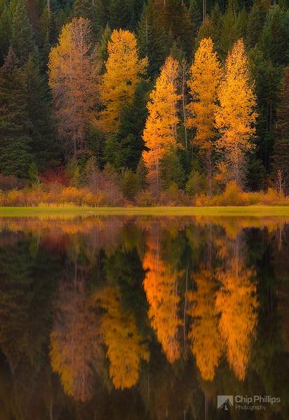 """""""Fall Reflections Trillium Lake"""""""
