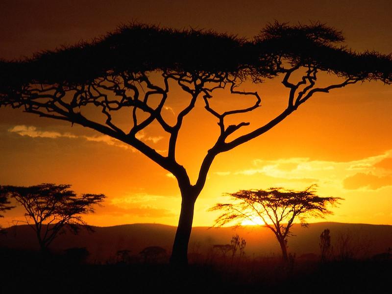 Tanzanian Sunset.jpg