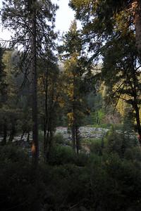 Sierra City - August 2012