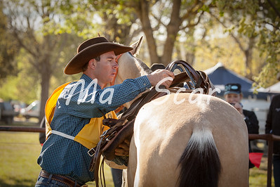 BATTLE ON THE BIDGEE 2017