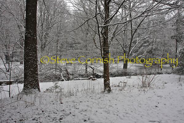 NC Winter 2010