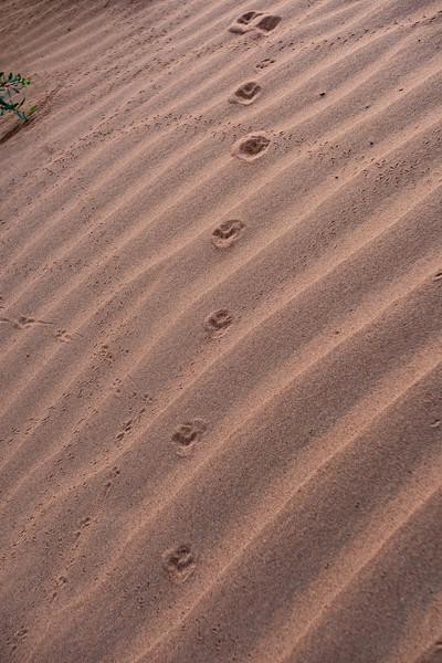 Marruecos-_MM11598.jpg