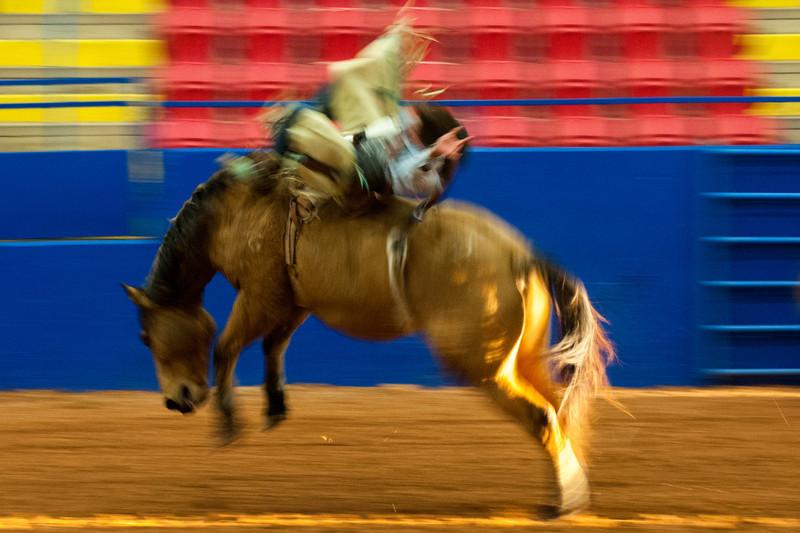 Austin_Rodeo-2601.jpg