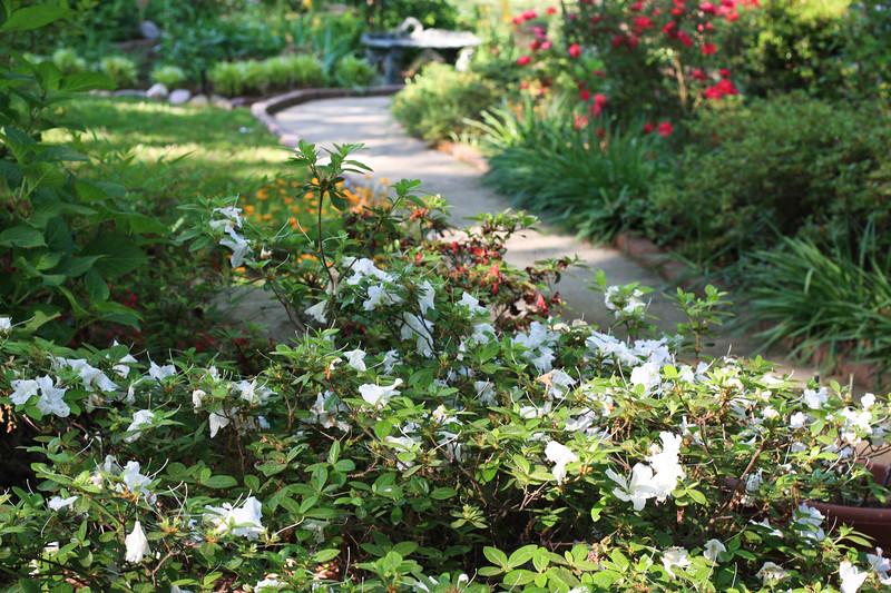 Moms_garden9.jpg