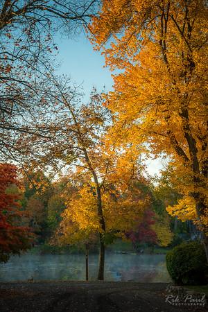 Autumn turning