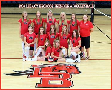 2008 Mansfield Legacy Freshmen A Volleyball