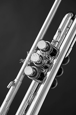 Trumpet Black and White Fine Art Photography