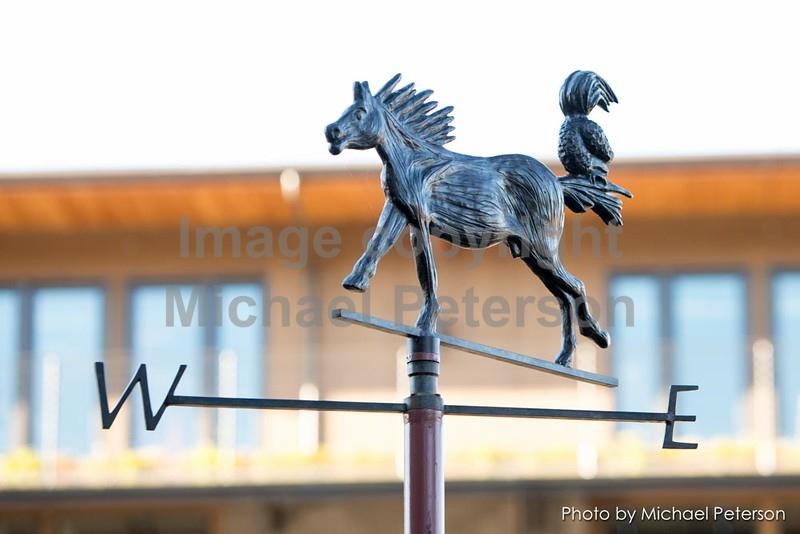 Sculptures2015-1184.jpg