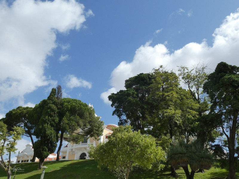 Lisbon August 19 -15.jpg