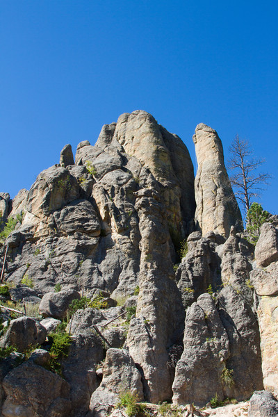 05_Needles Highway_South Dakota-56.jpg