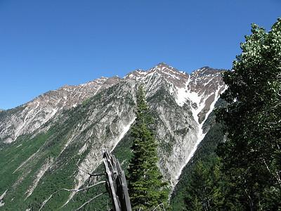 Red Pine Trail, LCC