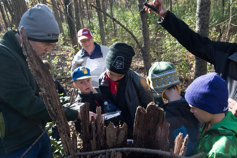 Cub Scouts Hike