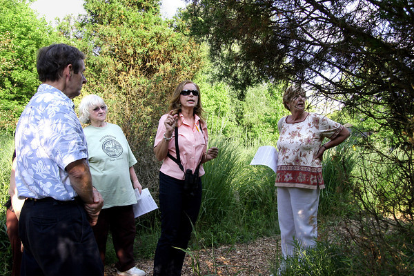 Natural garden tour in Lafayette Hill