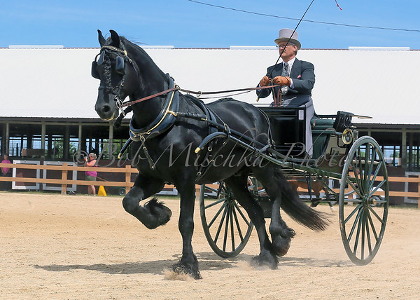 06/20-21/20 Midwest Carriage Festival