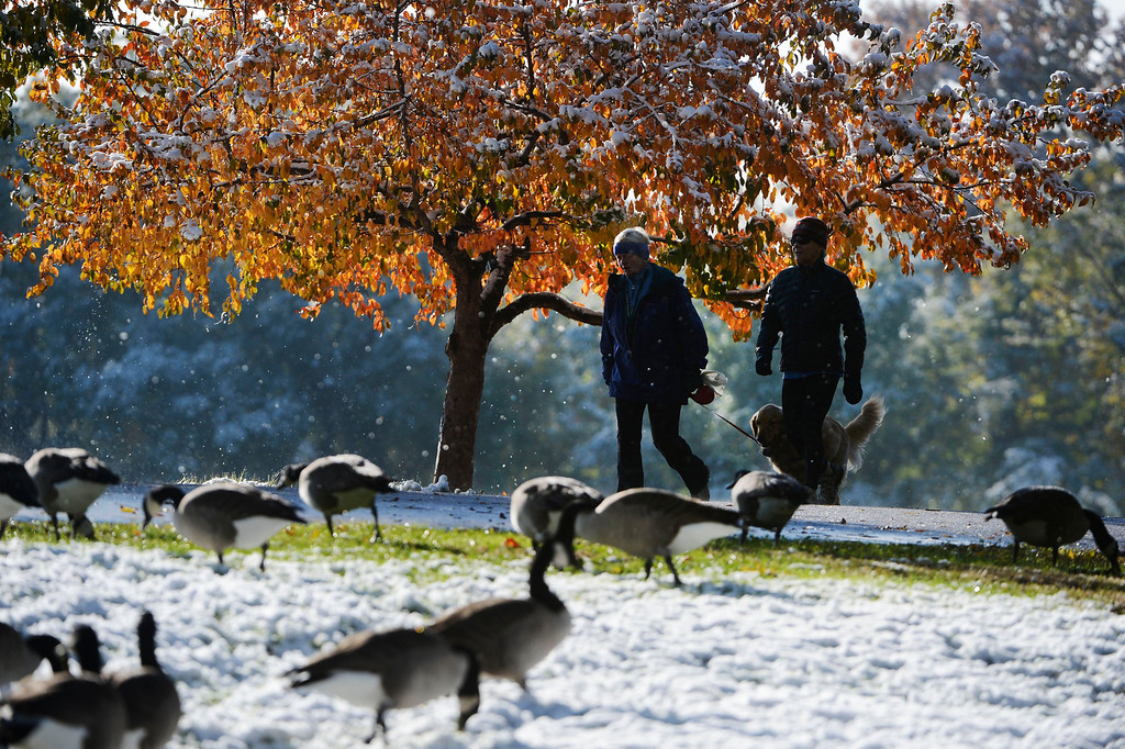 . Two people walk a dog along the walking/bike path on the south side of Washington Park enjoying a fresh layer of snow and geese Friday morning, October 18, 2013.  (Photo By Andy Cross/The Denver Post)