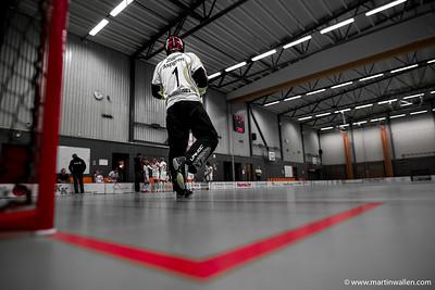 2017-01-22 Dingle AIK - Floda IBK