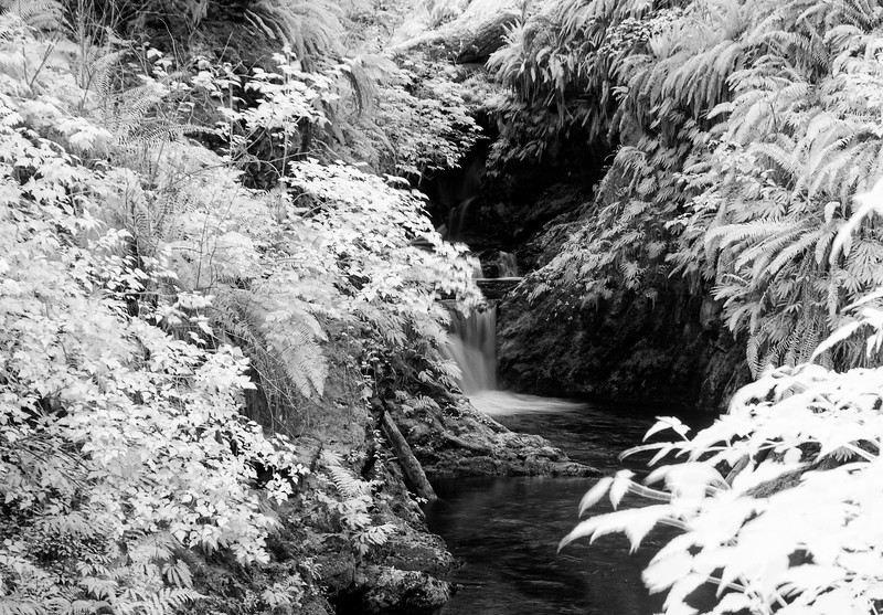 river b                         .jpg