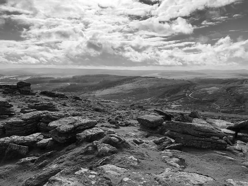 Peter - Dartmoor